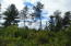 TBD Co RD L Road, Dunbar, WI 54119