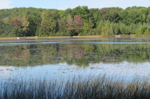 East Lost Lake Road, Wausaukee, WI 54177