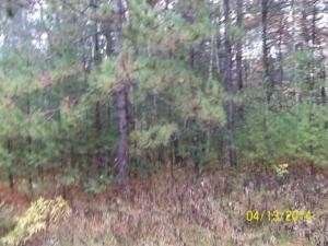 Hwy P, Beaver, WI 54161