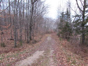 Lot 22 Blue Heron Lane, Silver Cliff, WI 54104