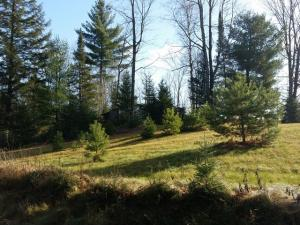 W7689 Marquis Road, Amberg, WI 54102
