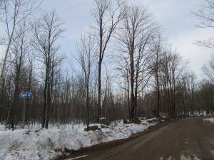 Harper Road, Silver Cliff, WI 54104