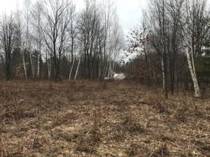 Lot 6 Simpson Lake Lane, Crivitz, WI 54114
