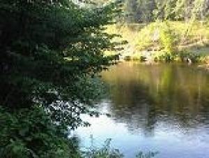 Pheasant Drive, Crivitz, WI 54114