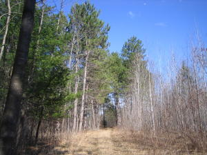 9.75 Acres Wontor Road, Amberg, WI 54102