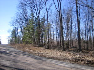 9.00 Acres Wontor Road, Amberg, WI 54102