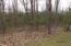 N10160 Deer Lane, Wausaukee, WI 54177