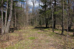 Lot 7 Poachers Run Lane, Silver Cliff, WI 54104