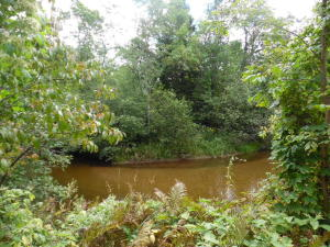 TBD Lily Lake Road, Dunbar, WI 54119