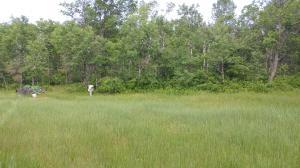11222 Sagewood Trail, Crivitz, WI 54114