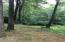 N19220 Gray Fox Drive, Dunbar, WI 54119