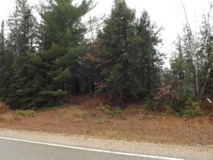 6 Acres Co Rd RR, Wausaukee, WI 54177