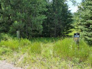 TBD Barlow Lake Road, Niagara, WI 54151