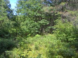 Lot 34 Abbey Road, Crivitz, WI 54114