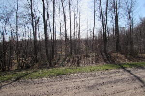 Lot 14 Fisherman Lane, Silver Cliff, WI 54104