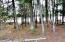 1863 Big Cub Trail, Blackwell, WI 54541