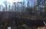 Pine Woods Road, Coleman, WI 54112