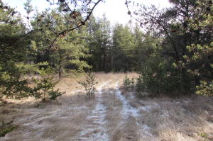 Lot 8 Silver Creek Road, Crivitz, WI 54114