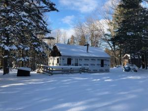 W8548 Perch Lake Road, Wausaukee, WI 54177