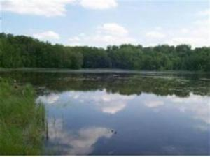 Lot 48 Wellsprings Court, Crivitz, WI 54114