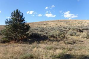 Nhn Dry Gulch, Florence, Montana