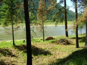Lot 4 Quarter Circle Cross, Saint Regis, MT 59866