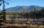 Sinclair Creek Cedars, Eureka, MT 59917