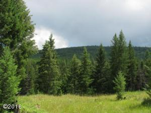 5 Acres Gray Wolf Trail, Rexford, MT 59930