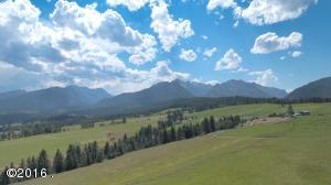 Open grassy meadows for 150-170 cow/calf pairs and elk