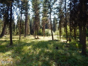 117 Rainbow Drive, Seeley Lake, MT 59868