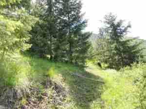 Tbd Larch Camp Road, Missoula, MT 59801