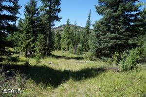 285 Forest Ridge Trail, Kila, MT 59920