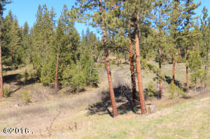 Lot 13 Calamity Lane, Huson, MT 59846