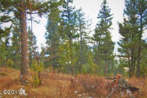 Nhn Indian Creek Road, Eureka, MT 59917