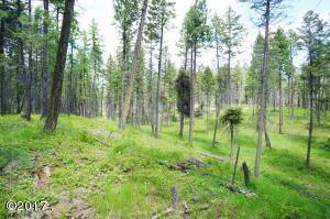 212 Colter Road, Lakeside, MT 59922