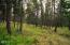 Nhn Gray Wolf Trail, Rexford, MT 59930