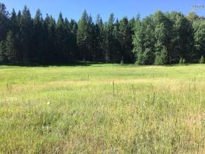 1170 Bierney Creek Road, Lakeside, MT 59922