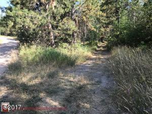 Lot 1 Beargrass Mountain, Arlee, MT 59821