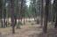 Nhn Forest Loop Road, Lot 34, Eureka, MT 59917