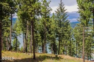 Lot 23 Osprey Court, Rexford, MT 59930