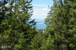 Skyview Drive, Rexford, MT 59930