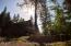 9564 Bridge Burn Trail, Clinton, MT 59825