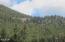 Upper woods