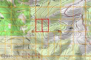 Lot 55 Beaverslide/Access Road, Helmville, MT 59843
