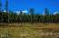 Sinclair Creek Road, Eureka, MT 59917