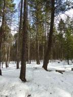 Nhn Bowser Lake Road, Kalispell, MT 59901