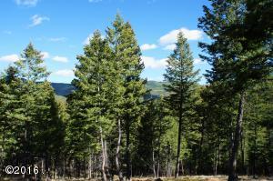 246 Forest Ridge Trail, Kila, MT 59920