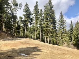 1775 Castle View Drive, Victor, MT 59875