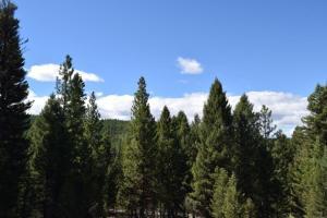 266 Leota Peak Court, Seeley Lake, MT 59868
