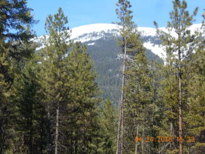 Cedar Creek, Plains, Montana 59859